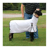 WEAVER PRO-COOL SHEEP BLANKET - Palmer Farm and Ranch