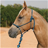 PROFESSIONALS CHOICE ROPE HALTER WITH 10' LEAD - Palmer Farm and Ranch