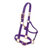 "3/4"" ADJUSTABLE CHIN & THROAT SNAP HALTER- WEANLING/PONY - Palmer Farm and Ranch"