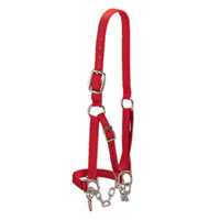 HALTER NYLON REST CALF- SMALL RED - Palmer Farm and Ranch