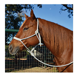 HALTER MULE TAPE - Palmer Farm and Ranch